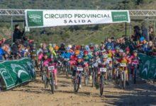 Rally-Villaverde-del-Rio-cronica